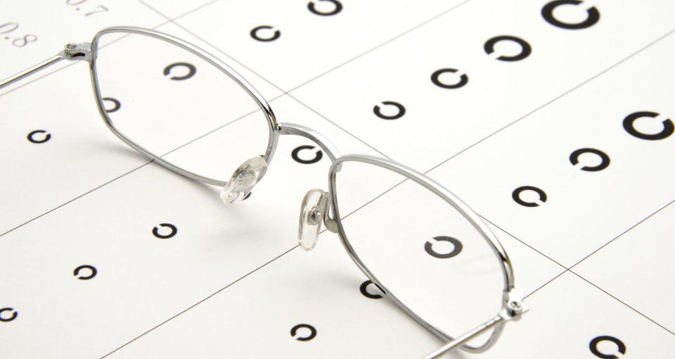 視力 障害 者 手帳